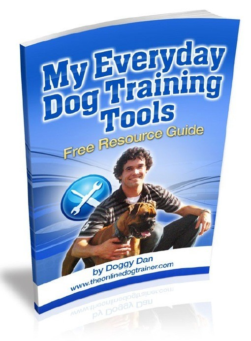 My_Everyday_Dog_Training_Tools