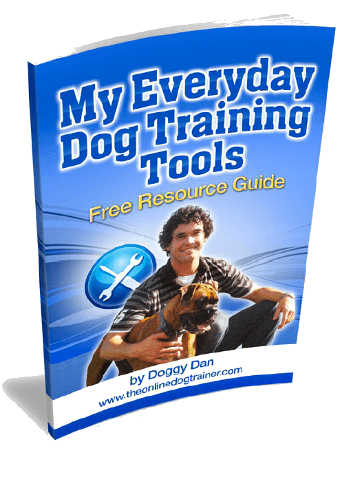 My_Everyday_Dog_Training_Tools