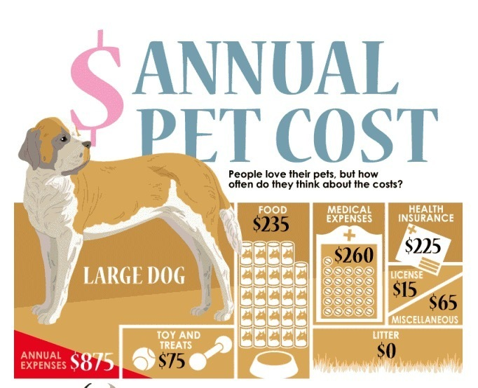 Annual Cost of Having A Pet